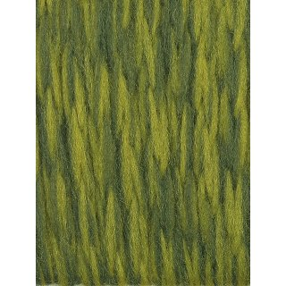 12 oliv bicolor